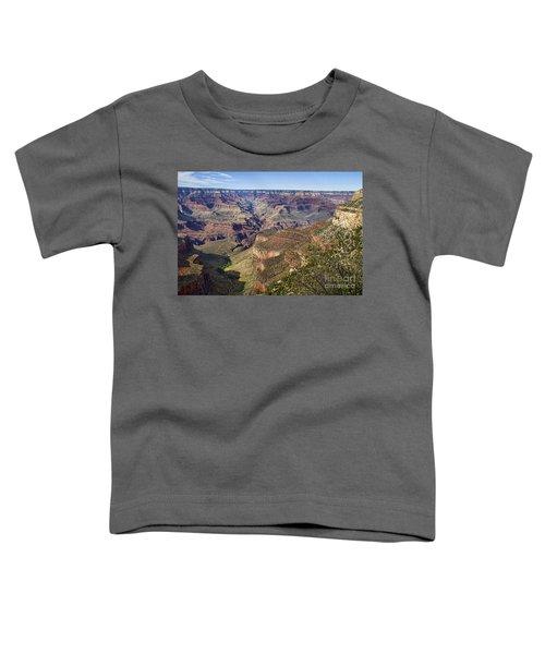 Natures Layer Cake Toddler T-Shirt