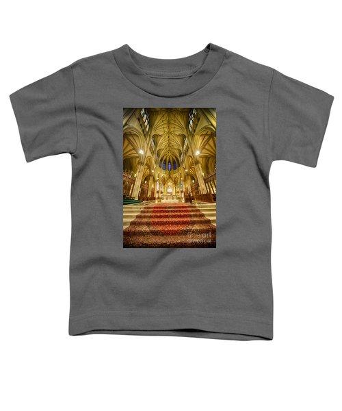 Stunning St Patricks I Toddler T-Shirt