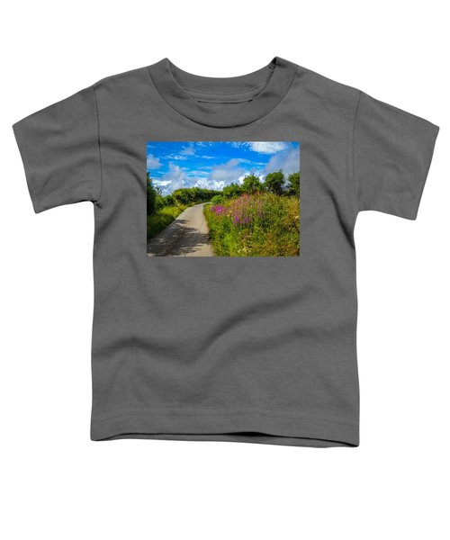 Summer Flowers On Irish Country Road Toddler T-Shirt