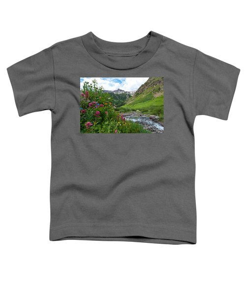Summer In The San Juans Toddler T-Shirt