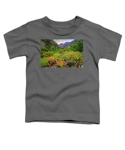 Summer Wildflowers In Lundy Canyon Toddler T-Shirt