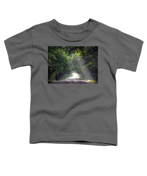 Sun Rays On Waters End Road Toddler T-Shirt