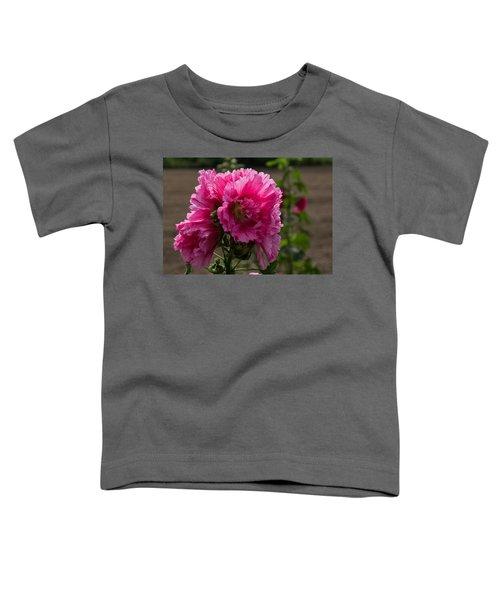 Sunny Vivid Pink Hollyhocks In A Cottage Garden Toddler T-Shirt