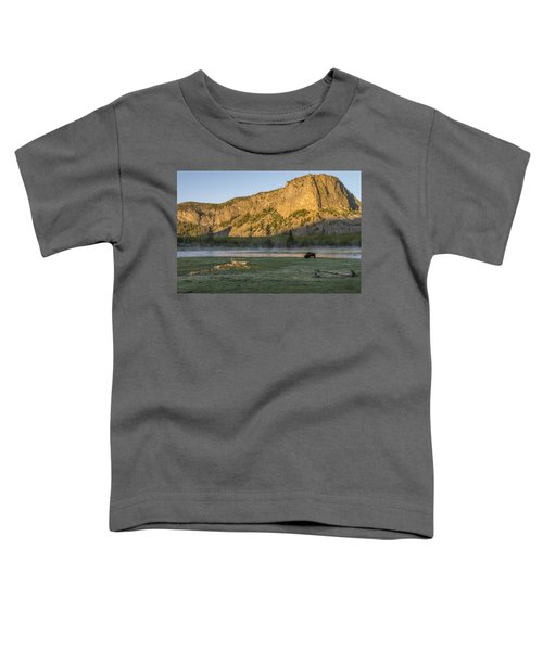 Sunrise Mt. Hayes Yellowstone National Park Toddler T-Shirt