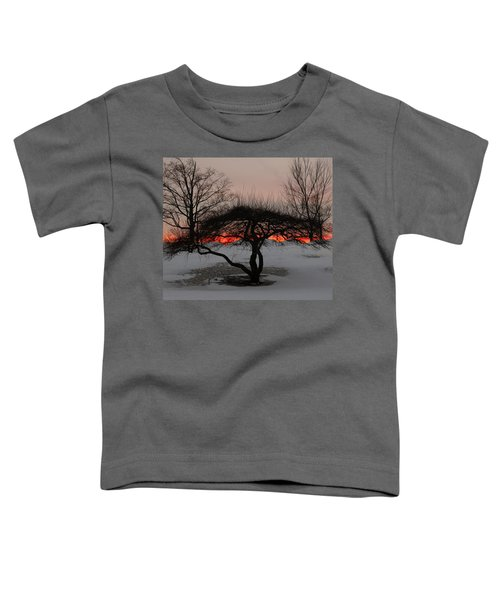 Sunroof Toddler T-Shirt