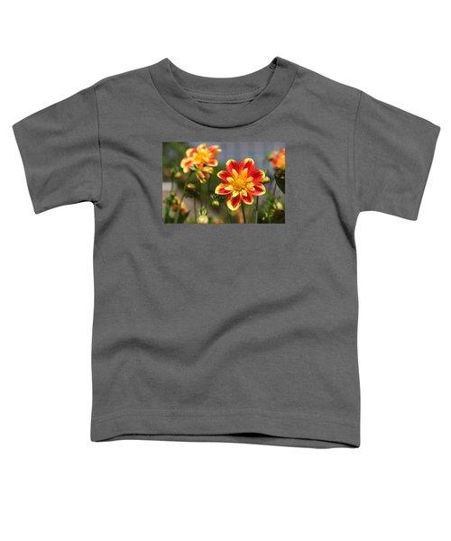 Sunshine Flower Toddler T-Shirt