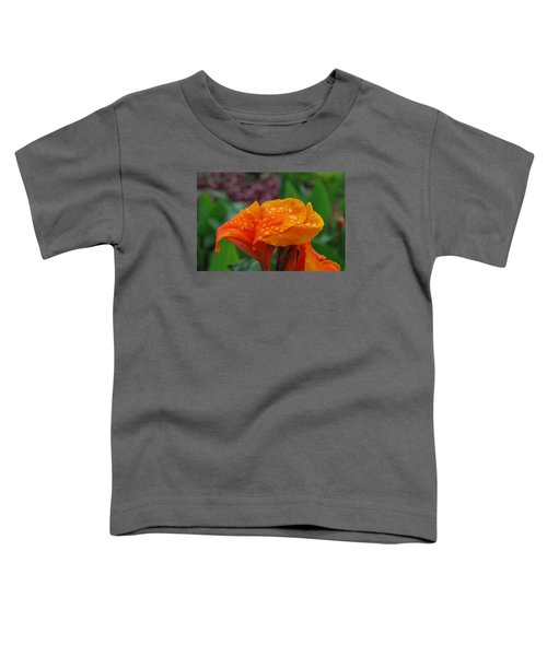 Sunshine From Within Toddler T-Shirt