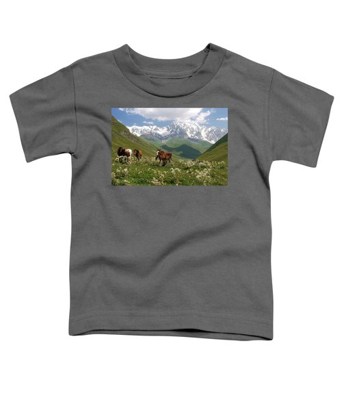 Svaneti  Toddler T-Shirt