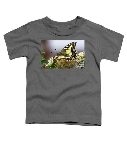 Swallowtail Butterfly Toddler T-Shirt