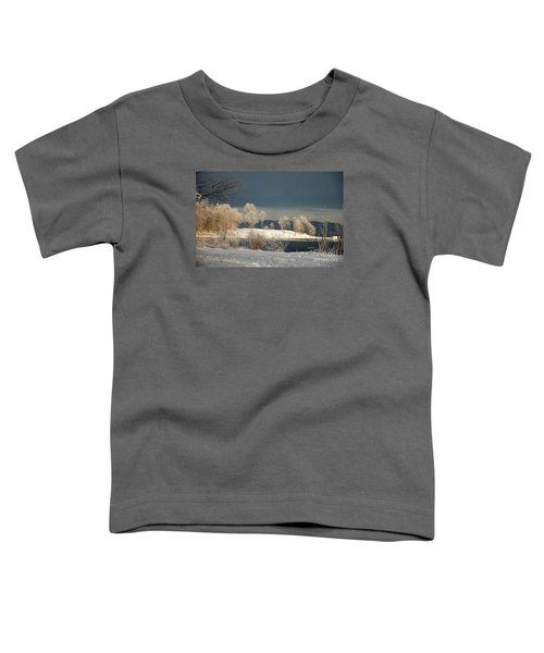 Swans On A Frosty Day Toddler T-Shirt
