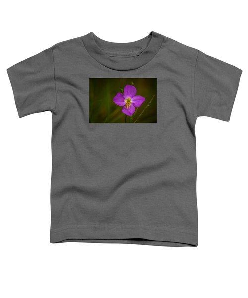 Sweetly Toddler T-Shirt