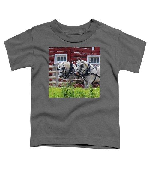 Team Of Greys Toddler T-Shirt