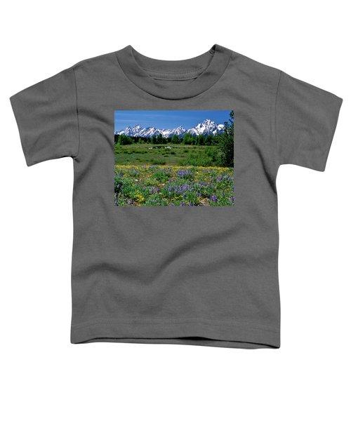 Teton Grandeur Toddler T-Shirt
