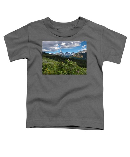 Teton Range Toddler T-Shirt