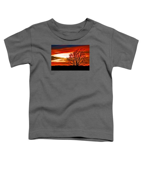 Texas Sunset Toddler T-Shirt