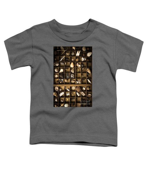 The Collection Toddler T-Shirt