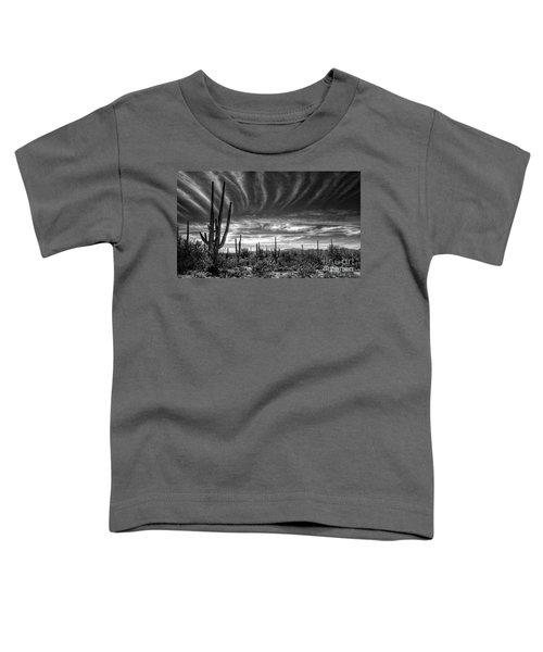 The Desert In Black And White Toddler T-Shirt