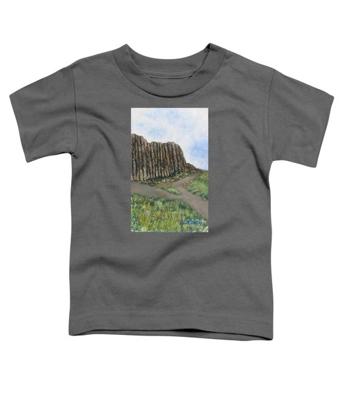 The Giant's Causeway Toddler T-Shirt