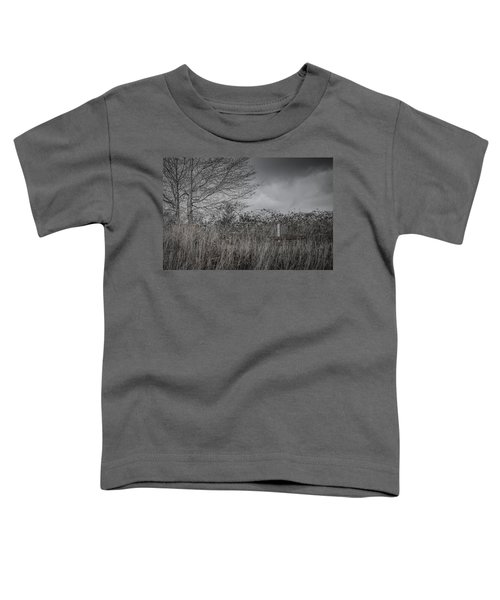 The Hidden Bench 2 Toddler T-Shirt