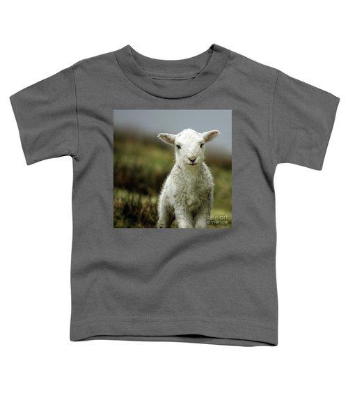 The Lamb Toddler T-Shirt