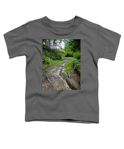 The Ledge Point Trail Toddler T-Shirt