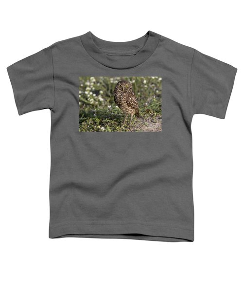 The Look Toddler T-Shirt