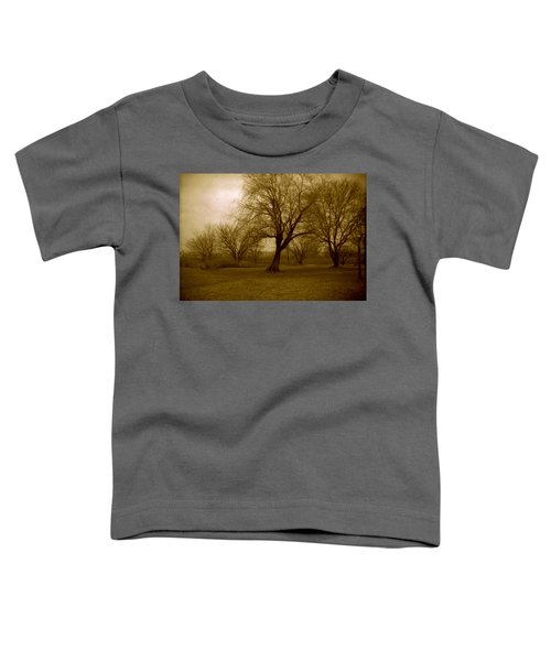 The Midnight Sky Toddler T-Shirt