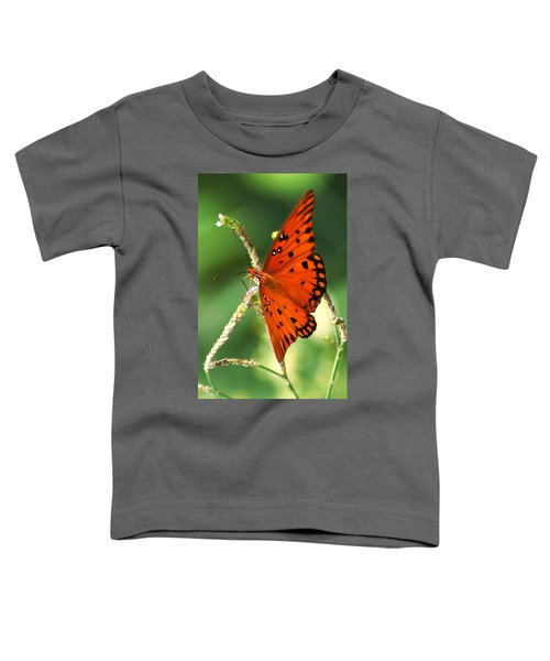The Passion Butterfly Toddler T-Shirt