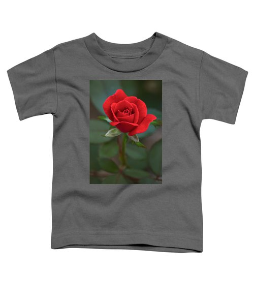 The Perfect Rose Toddler T-Shirt