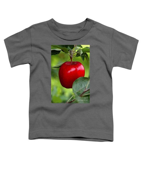 The Red Apple Toddler T-Shirt