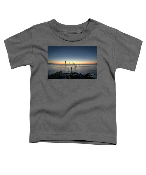 The Remains  Toddler T-Shirt