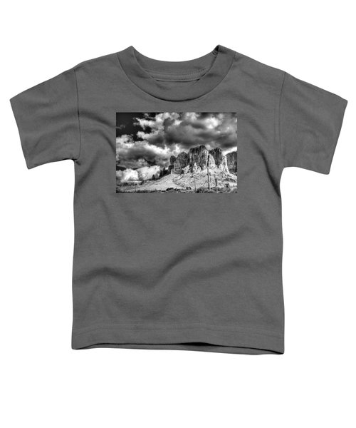 The Superstitions  Toddler T-Shirt