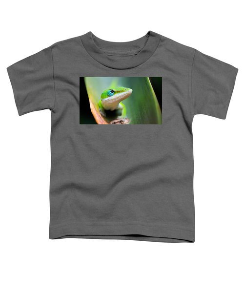 The Watching Eye Toddler T-Shirt by Shelby  Young