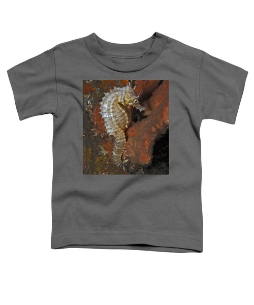 The White Seahorse Toddler T-Shirt
