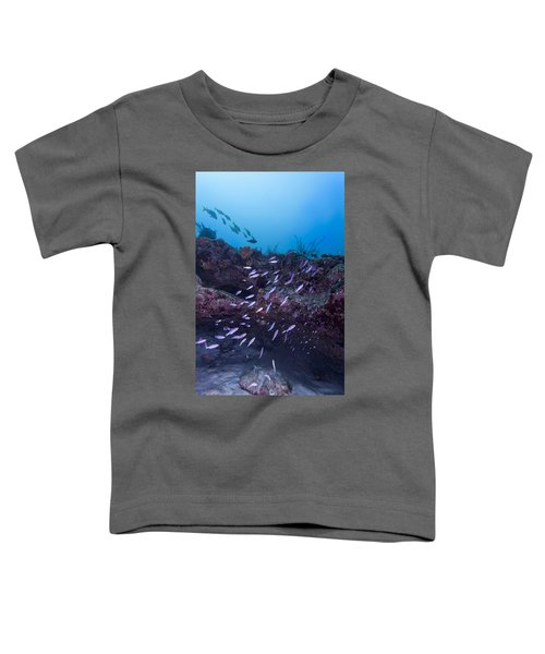 The World Of Purple Toddler T-Shirt