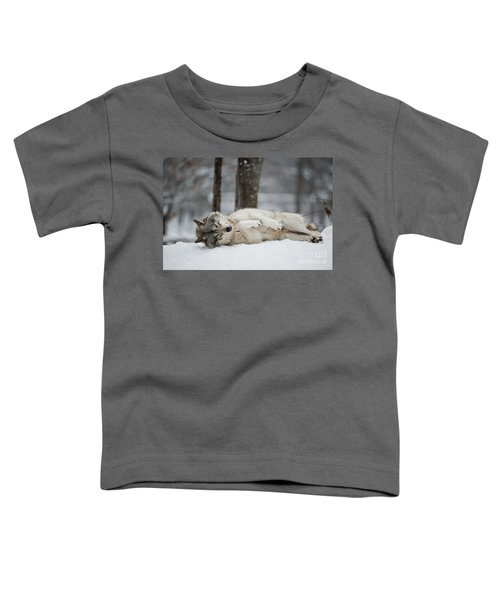 Timber Wolf In Winter Toddler T-Shirt