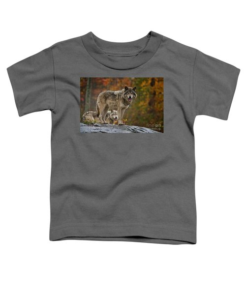 Timber Wolf Pictures 410 Toddler T-Shirt