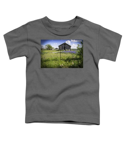 Times Past Toddler T-Shirt