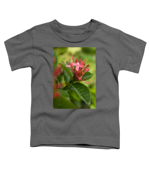 Tropical Flowers In Singapore Toddler T-Shirt