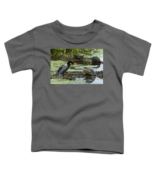 Turtles And Anhinga Toddler T-Shirt by Mark Newman