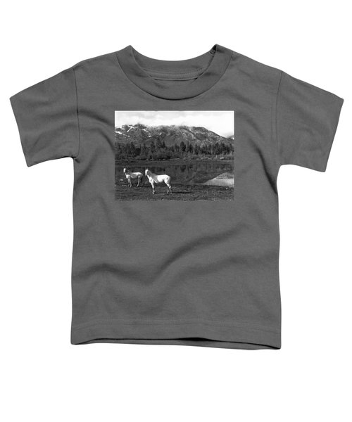 Two White Horses By A Pond Toddler T-Shirt