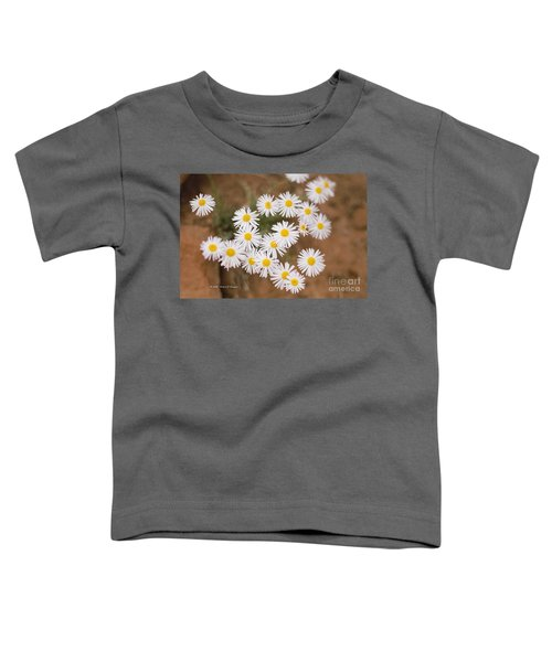 Unidentified Daisy Toddler T-Shirt