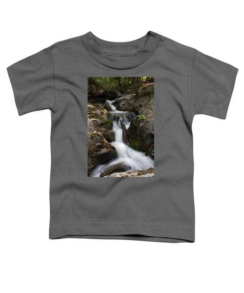 Upper Pup Creek Falls Toddler T-Shirt