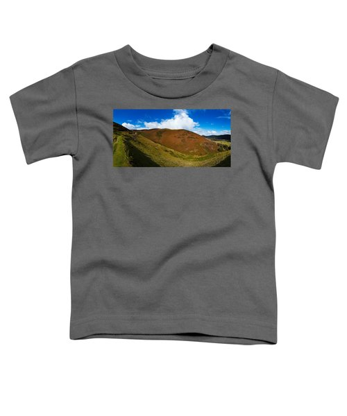 Valley To Hopes Wood, Little Stretton Toddler T-Shirt