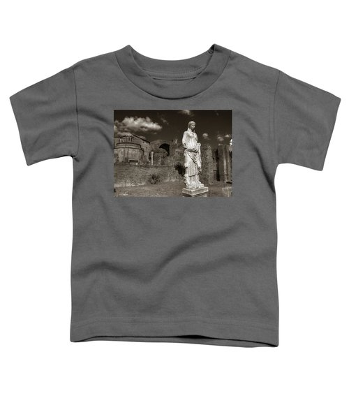 Vestal Virgin Courtyard Statue Toddler T-Shirt