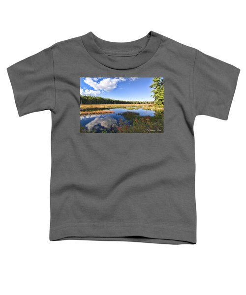 Vibrant Fall Scene Toddler T-Shirt