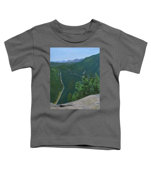 View From Mount Willard Toddler T-Shirt