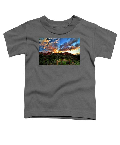 View From The Fence  Toddler T-Shirt