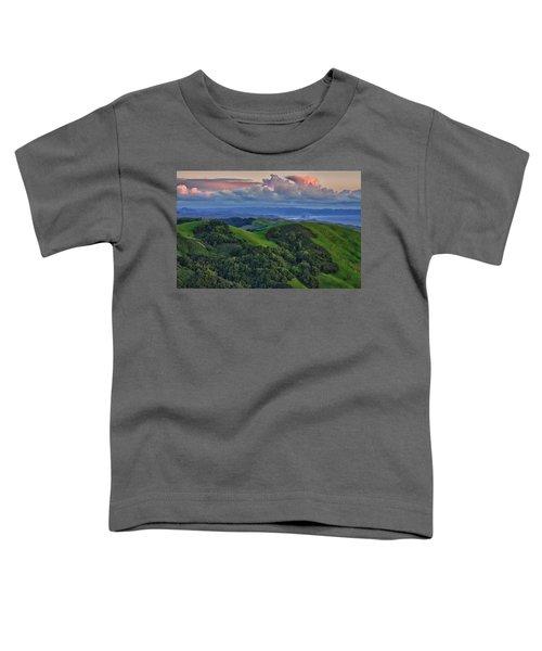 View Of Morro Bay Toddler T-Shirt