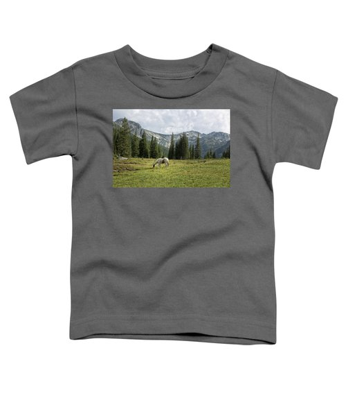 Wallowas - No. 2 Toddler T-Shirt